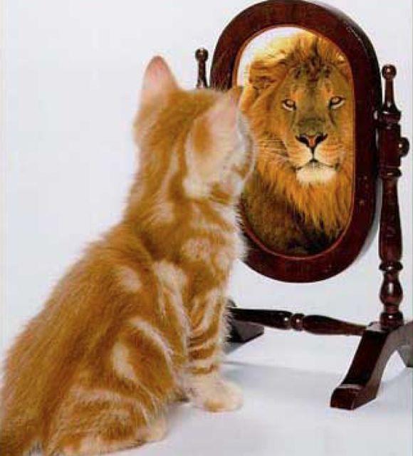 identité, personnalité